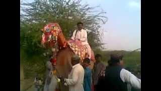 Balochi Wedding
