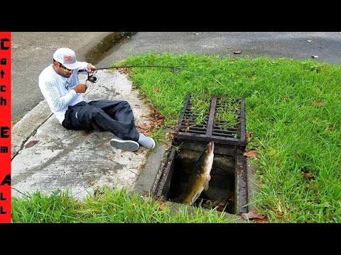 STOP INVASIVE FISH In UNDERGROUND SEWER TUNNELS From TAKING OVER!