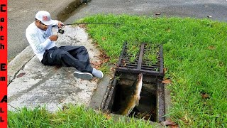 stop-invasive-fish-in-underground-sewer-tunnels-from-taking-over