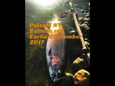 Salmon river September 2017