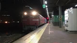EF81形404号機牽引の貨物列車・博多駅に到着