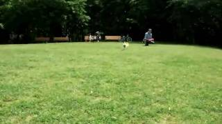 去年一年の間に撮った、風太のフリスビー動画をつなげてみました。