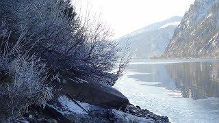 Природа Сибири//Енисей могучая река//Домашнее Хозяйство