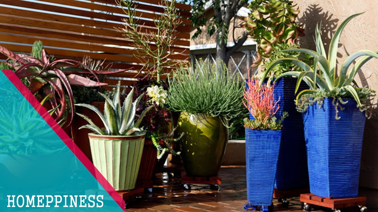 (SIMPLE And EASY) Build An Awesome Succulent Garden With This Newly Succulent  Garden Design Ideas