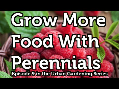 grow-more-food-with-perennial-fruit-and-nut-bushes,-vines-and-trees