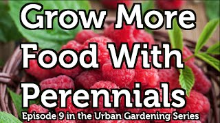 Grow More Food with Perennial Fruit and Nut Bushes, Vines and Trees