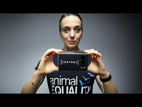 Amanda Abbington duces iAnimal  42 days in the life of chickens