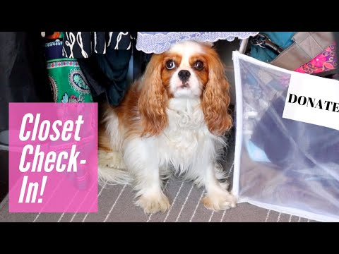 👚👗Summer's End Closet Clean Out, Round One! | Declutter with Me!