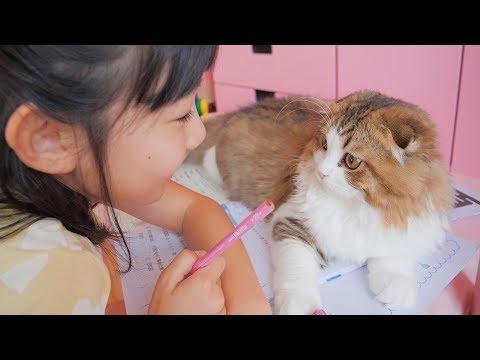 夏休みの宿題中の小学生女子に構ってもらいたい猫と夏休みの日常