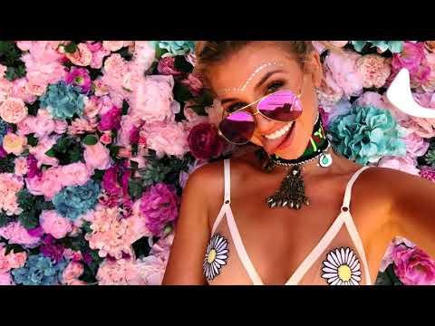 Best EDM Festival Mix 2018 Electro House Party Music Charts Mix 2018