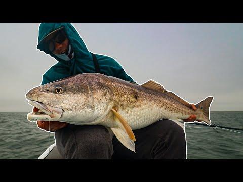 NEW PB REDFISH ON FLY! Bull Redfish Every Cast In Louisiana (Day 2)