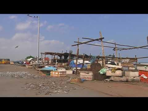 Chennai oil spill: Fishermen yet to get compensation