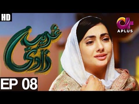 Ghareebzaadi - Episode 08 - A Plus ᴴᴰ Drama