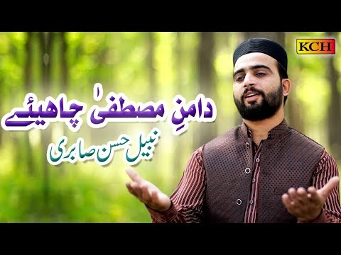 Daman e Mustafa Chahiye ||  Nabeel hassan Sabri || URDU NAAT SHRIF