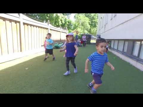 Central Montessori Schools Summer Camp