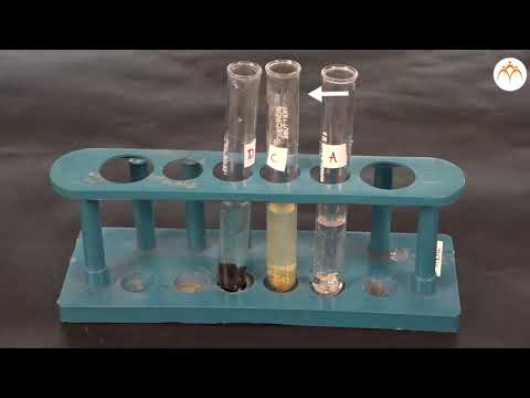 To Study The Reactions Of The Metals Zn, Fe, Cu ,and Al With Solution Of Salts