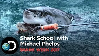Shark School with Michael Phelps | Shark Week 2017