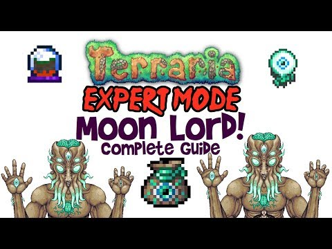 Terraria Moon Lord Guide, Expert Mode & Normal! (Arena, Drops & Fight, Mobile/Console/PC)