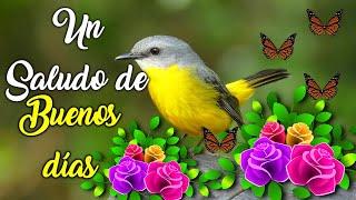 Un Hermoso Saludito de Buenos Dias - Abrelo El Mensaje Mas Bonito Para Ti