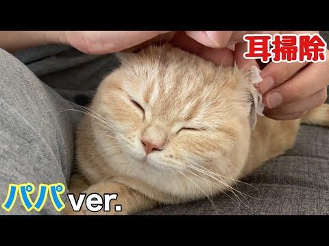 【猫耳掃除】パパが初…