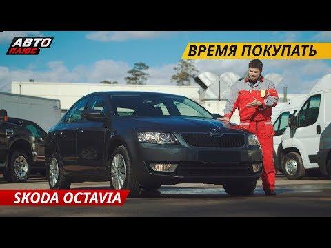 Слабые места Skoda Octavia | Подержанные автомобили