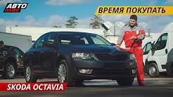 Слабые места Skoda Octavia   Подержанные автомобили
