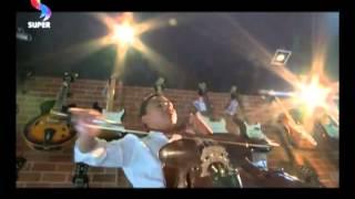 Sonata Escola de Musica - história dos instrumentos VIOLON CELO