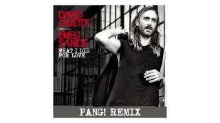 David Guetta - What I Did For Love (PANG! remix - sneak peek) ft Emeli Sandé