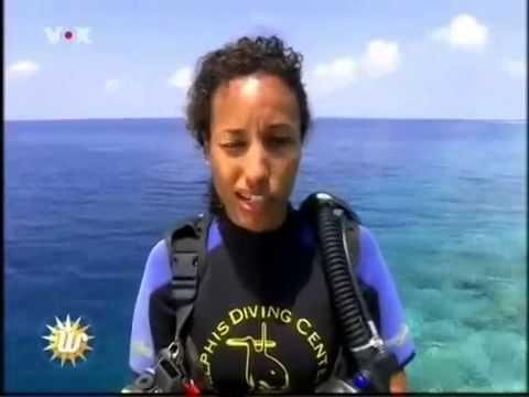 scuba diver dating