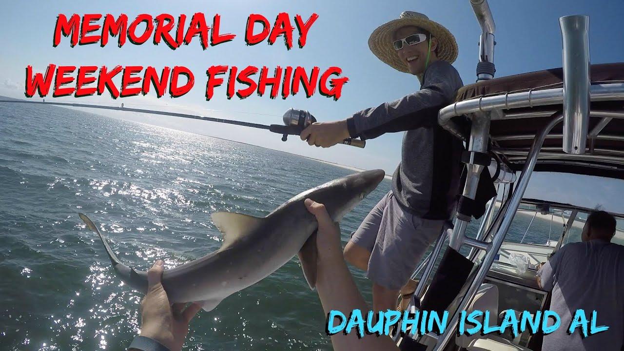 Dauphin island alabama fishing shark and a beautiful for Dauphin island fishing report