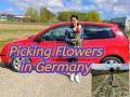 PICKING FLOWERS IN GERMANY   SPRING TIME   FRÜHLING IN DEUTSCHLAND 🇩🇪   FLOWER FARM   VLOG #70