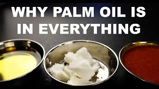 Why palm oil is in everything, and why that's bad