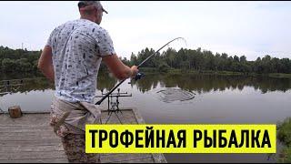Лучшая рыбалка на карпа и амура Михайловское озеро