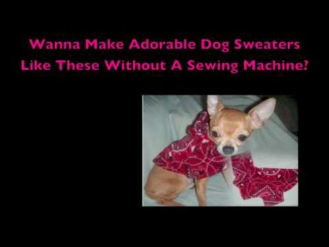 Dog Clothes Patterns No Sewing Required Youtube