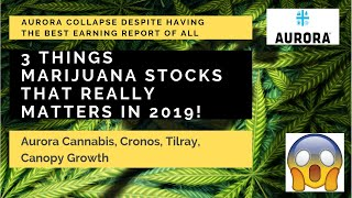 3 THINGS in Marijuana Stocks that REALLY Matters IN 2019 After the Earning Reports. Aurora focused