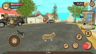 Cat Sim - (Симулятор Кота Онлайн) #2