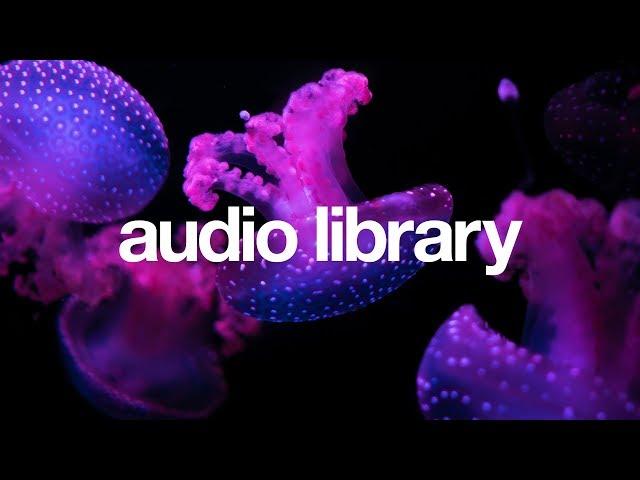 Jellyfish — Declan DP & KODOMOi  [Vlog No Copyright Music]