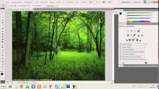 Инструмент выделение в фотошопе - WebDesignTV