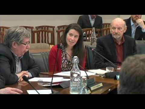 Dunedin City Council - Infrastructure Services Committee - July 12 2016