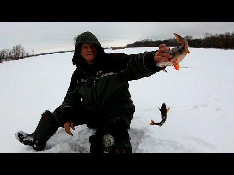 Окуневая рыбалка. Александровский затон.
