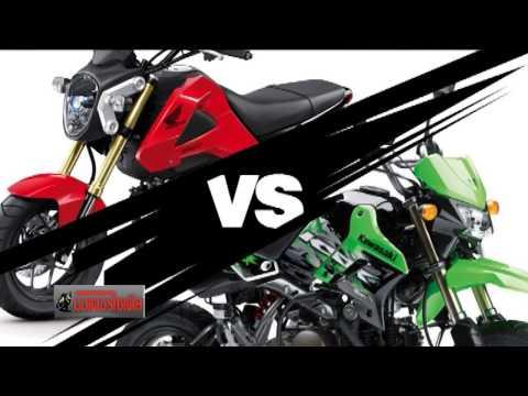 KSR + Z125 vs MSX125 KAWASAKI ท้าชน HONDA