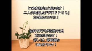 戸田恵梨香と加瀬亮が熱愛 「SPEC」で共演 共演した「SPEC」ま...
