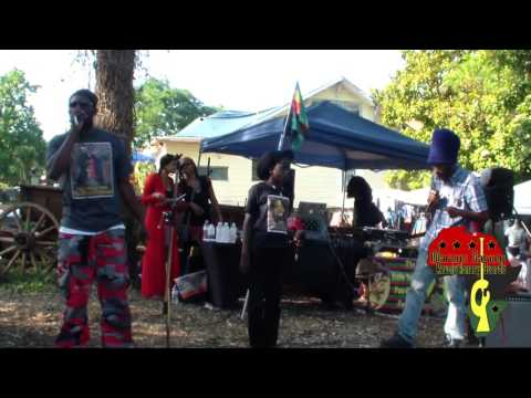 Marcus Garvey Revolutionary Guards (MGRG) Organic Fest 2016