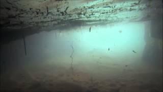 La Grotte aux Ctenophores