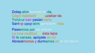 Yüksek Sadakat - Belki Üstümüzden Bir Kuş Geçer (lyrics español sözleri)