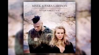 Zara Larsson, MNEK - Never Forget You 1 HOUR VERSION