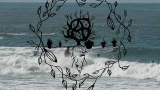 (11-3-20)(Praia do Tombo)(SUP)(Manhã)(Guarujá)(Adquira sua gravação)