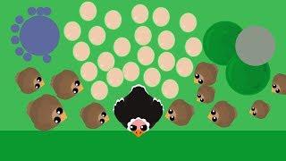 Mope.io New Ostrich Unlimited Eggs Glitch !! Funniest Glitch Ever //Bird Update Glitches Part 3