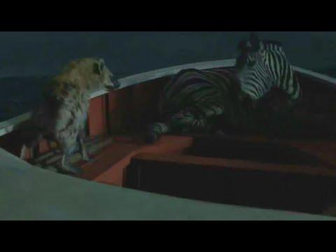 Hiena Mata Zebra | As Aventuras De Pi (2012)