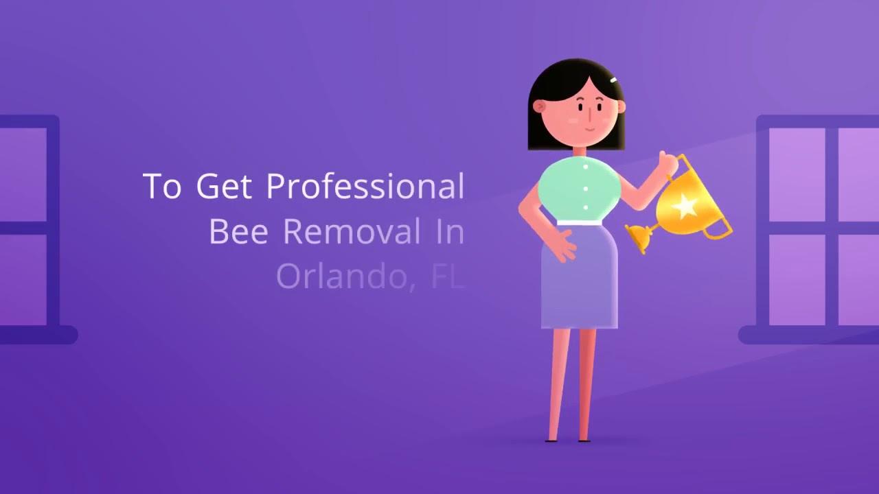 OCP Bee Removal Orlando FL - Bee Exterminator